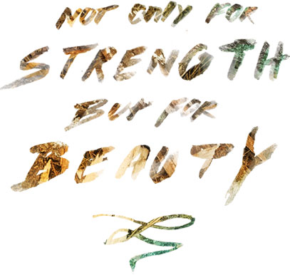 Not Only for Strength but for Beauty