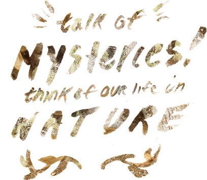 Talk or Mysteries! Think of Our Life in Nature